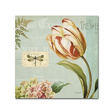 Trademark Fine Art Lisa Audit 'Mothers Treasure II' 24 x 24 (WAP0186-C2424GG)