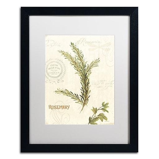 Trademark Fine Art Lisa Audit 'Aromantique II'  16 x 20 (WAP0193-B1620MF)