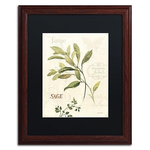 Trademark Fine Art Lisa Audit 'Aromantique IV'  16 x 20 (886511707924)
