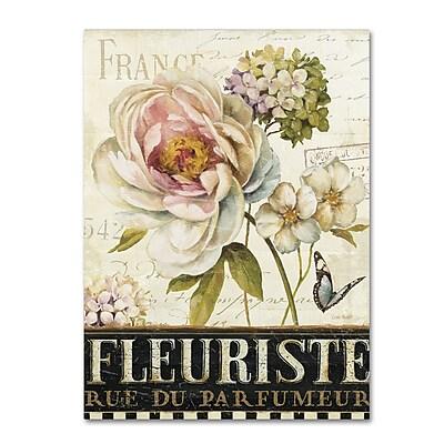 Trademark Fine Art Lisa Audit 'Marche de Fleurs III' 35 x 47 (WAP0198-C3547GG)