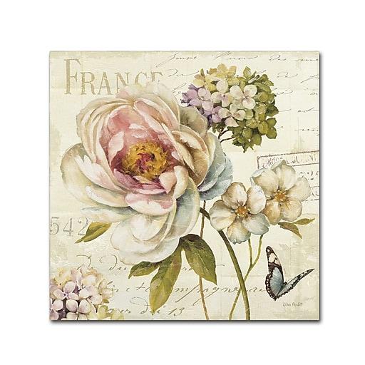 Trademark Fine Art Lisa Audit 'Marche de Fleurs III'  24 x 24 (WAP0201-C2424GG)