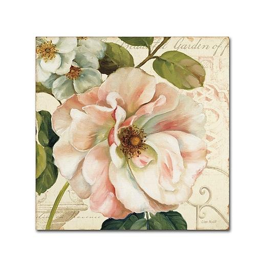 Trademark Fine Art Lisa Audit 'Les Jardin II'  24 x 24 (WAP0202-C2424GG)