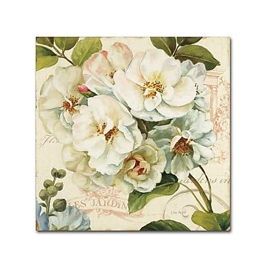 Trademark Fine Art Lisa Audit 'Les Jardin III' 14 x 14 (WAP0203-C1414GG)