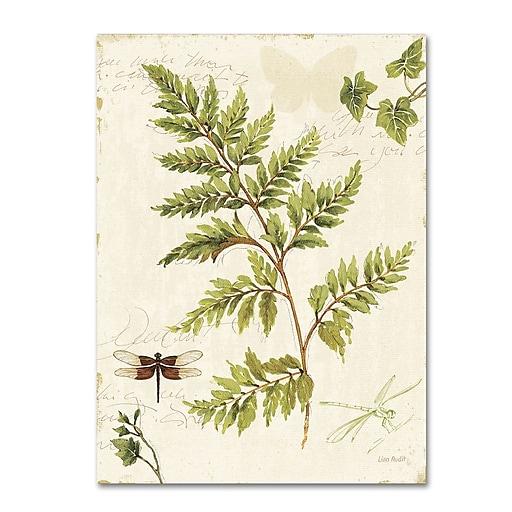 Trademark Fine Art Lisa Audit 'Ivies and Ferns I'  14 x 19 (WAP0217-C1419GG)