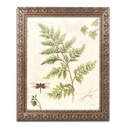 "Trademark Global Lisa Audit 'Ivies and Ferns I' Ornate Art, 16""L x 20""W, Framed (WAP0217-G1620F)"