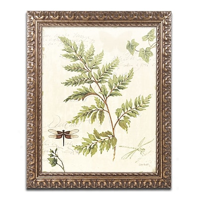 Trademark Fine Art Lisa Audit 'Ivies and Ferns I' 11 x 14 (WAP0217-G1114F)