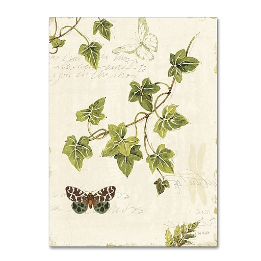 Trademark Fine Art Lisa Audit 'Ivies and Ferns II'  14 x 19 (WAP0218-C1419GG)