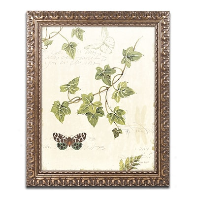 Trademark Fine Art Lisa Audit 'Ivies and Ferns II' 11 x 14 (WAP0218-G1114F)