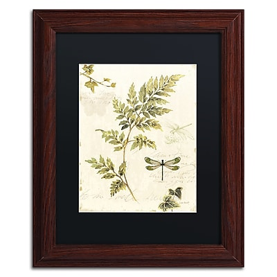 Trademark Fine Art Lisa Audit 'Ivies and Ferns III' 11 x 14 (886511710016)