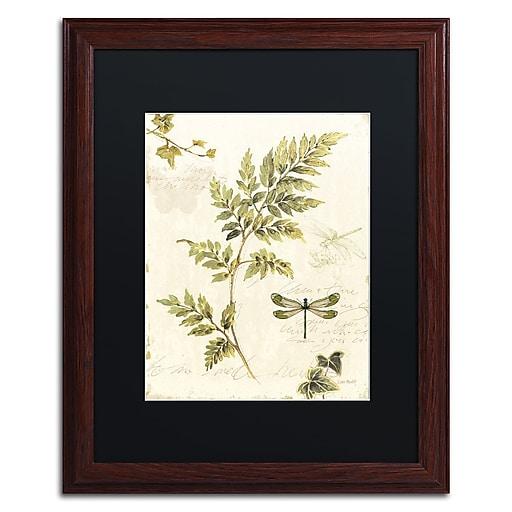 Trademark Fine Art Lisa Audit 'Ivies and Ferns III'  16 x 20 (886511710030)