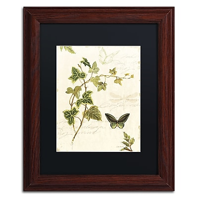 Trademark Fine Art Lisa Audit 'Ivies and Ferns IV' 11 x 14 (886511710115)