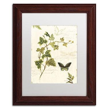 Trademark Fine Art Lisa Audit 'Ivies and Ferns IV' 11 x 14 (WAP0220-W1114MF)