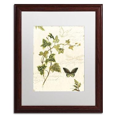 Trademark Fine Art Lisa Audit 'Ivies and Ferns IV' 16 x 20 (WAP0220-W1620MF)