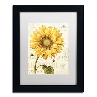 Trademark Fine Art Lisa Audit 'Under the Sun I' 11 x 14 (WAP0221-B1114MF)