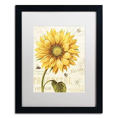 Trademark Fine Art Lisa Audit 'Under the Sun I' 16 x 20 (WAP0221-B1620MF)