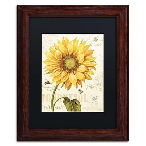 Trademark Fine Art Lisa Audit 'Under the Sun I'  11 x 14 (886511710214)