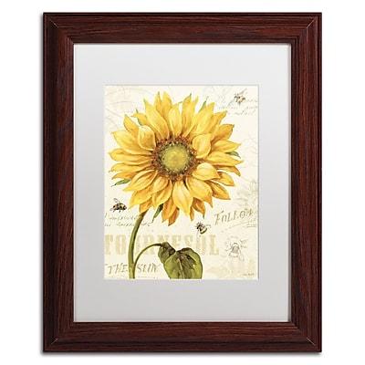 Trademark Fine Art Lisa Audit 'Under the Sun I' 11 x 14 (WAP0221-W1114MF)