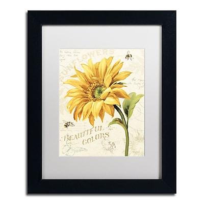 Trademark Fine Art Lisa Audit 'Under the Sun II' 11 x 14 (WAP0222-B1114MF)