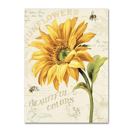 Trademark Fine Art Lisa Audit 'Under the Sun II'  14 x 19 (WAP0222-C1419GG)