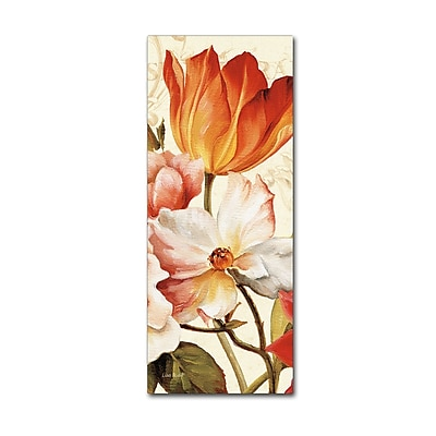 Trademark Fine Art Lisa Audit 'Poesie Florale Panel I' 20 x 47 (WAP0223-C2047GG)