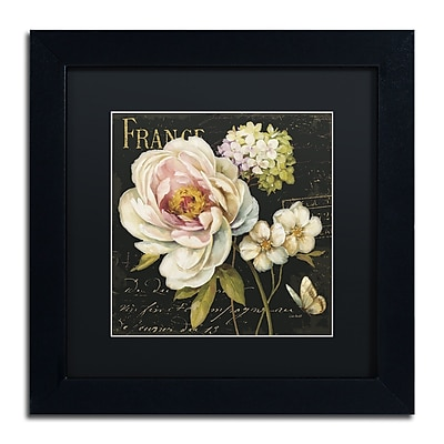 Trademark Fine Art Lisa Audit 'Marche de Fleurs on Black' 11 x 11 (886511710733)