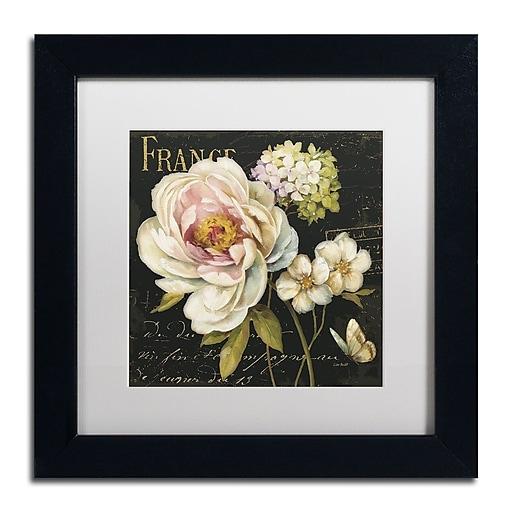 Trademark Fine Art Lisa Audit 'Marche de Fleurs on Black'  11 x 11 (WAP0228-B1111MF)