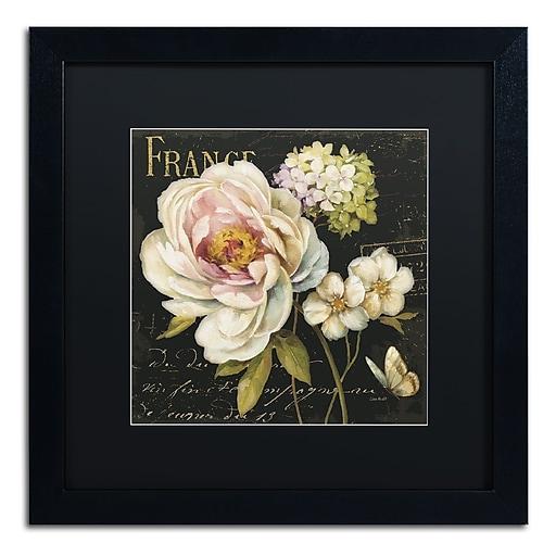 Trademark Fine Art Lisa Audit 'Marche de Fleurs on Black'  16 x 16 (886511710757)