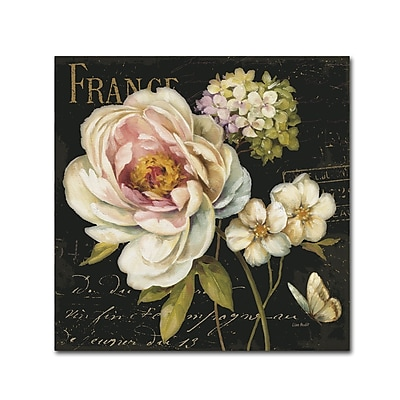 Trademark Fine Art Lisa Audit 'Marche de Fleurs on Black' 18 x 18 (WAP0228-C1818GG)
