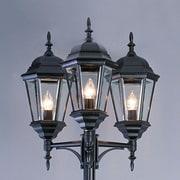 TransGlobe Lighting 3-Light 98'' Post Light; White