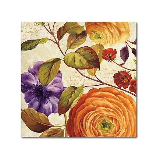 Trademark Fine Art Lisa Audit 'End of Summer III'  35 x 35 (WAP0232-C3535GG)