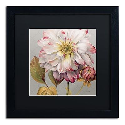 Trademark Fine Art Lisa Audit 'Classically Beautiful II' 16 x 16 (886511713178)