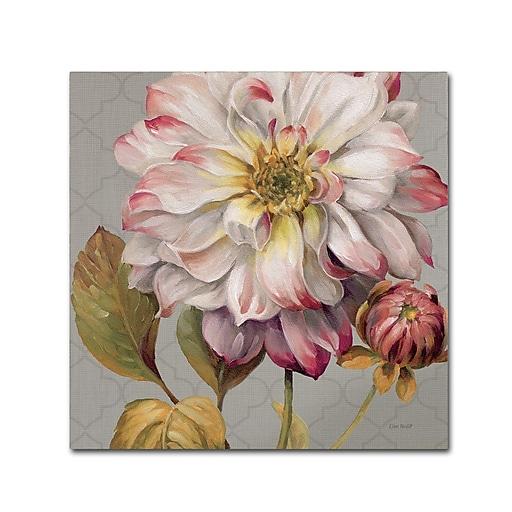 Trademark Fine Art Lisa Audit 'Classically Beautiful II'  35 x 35 (WAP0254-C3535GG)