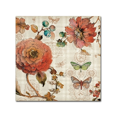 Trademark Fine Art Lisa Audit 'French Country IV' 24 x 24 (WAP0256-C2424GG)