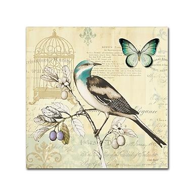 Trademark Fine Art Lisa Audit 'Freedom II' 24 x 24 (WAP0259-C2424GG)