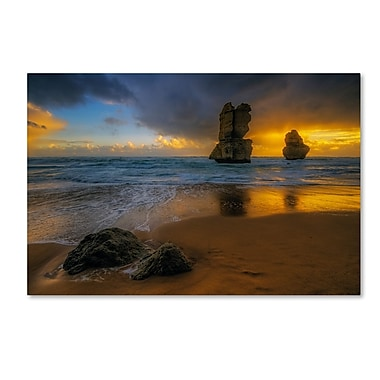 Trademark Fine Art Lincoln Harrison 'Beach at Sunset' 16 x 24 (ALI0723-C1624GG)