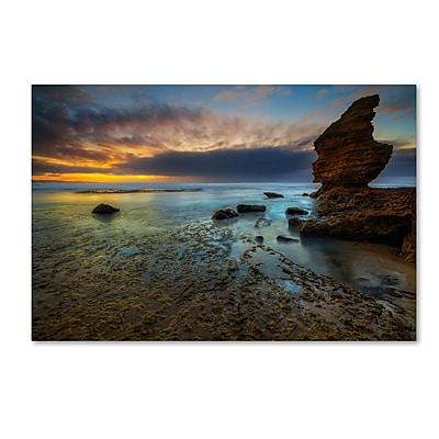 Trademark Fine Art Lincoln Harrison 'Beach at Sunset 3' 22 x 32 (ALI0725-C2232GG)