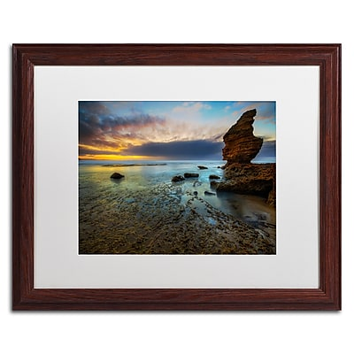 Trademark Fine Art Lincoln Harrison 'Beach at Sunset 3' 16 x 20 (ALI0725-W1620MF)