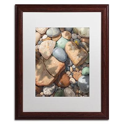 Trademark Fine Art Stephen Stavast 'Above the Shadows Break' 16 x 20 (ALI0742-W1620MF)