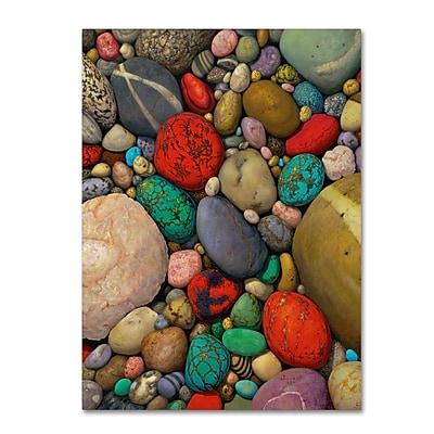 Trademark Fine Art Stephen Stavast 'Shallows of Treasure Creek' 35 x 47 (ALI0745-C3547GG)