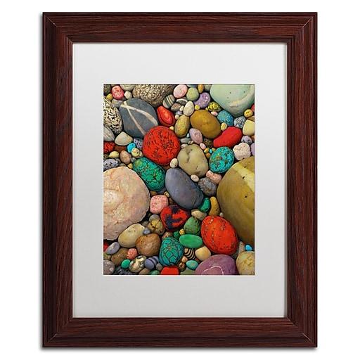 Trademark Fine Art Stephen Stavast 'Shallows of Treasure Creek'  11 x 14 (ALI0745-W1114MF)
