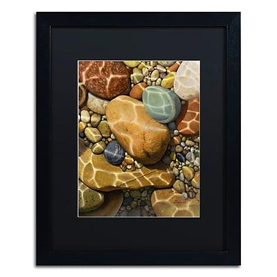 Trademark Fine Art Stephen Stavast 'Trip the Light Fantastic' 16 x 20 (886511730847)
