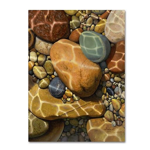 Trademark Fine Art Stephen Stavast 'Trip the Light Fantastic'  24 x 32 (ALI0748-C2432GG)