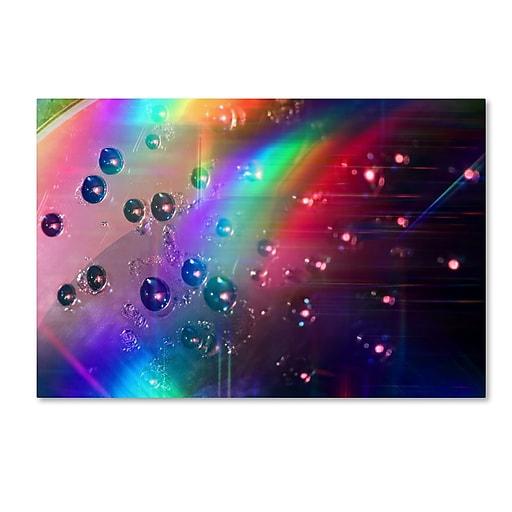 Trademark Fine Art Beata Czyzowska Young 'Rainbow Logistics II'  22 x 32 (BC0212-C2232GG)