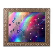 "Trademark Global Beata Czyzowska Young 'Rainbow Logistics II' Ornate Framed Art, 16"" x 20"" (BC0212-G1620F)"