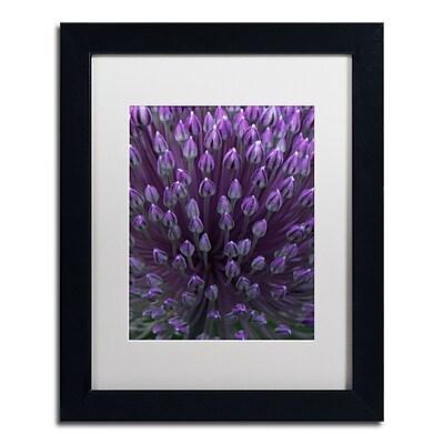 Trademark Fine Art Kurt Shaffer 'Alien Flower Pods' 11 x 14 (KS0173-B1114MF)