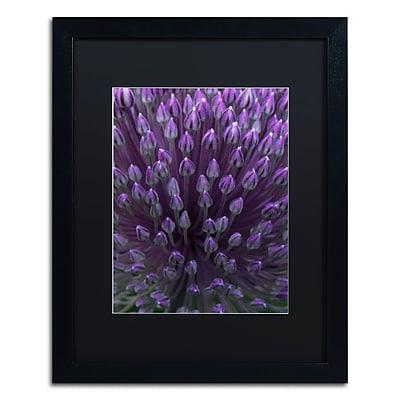 Trademark Fine Art Kurt Shaffer 'Alien Flower Pods' 16 x 20 (KS0173-B1620BMF)