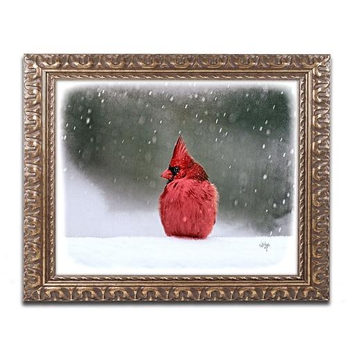 "Trademark Global Lois Bryan 'A Ruby in the Snow' 16"" x 20"" Ornate Framed Art (LBR0237-G1620F)"
