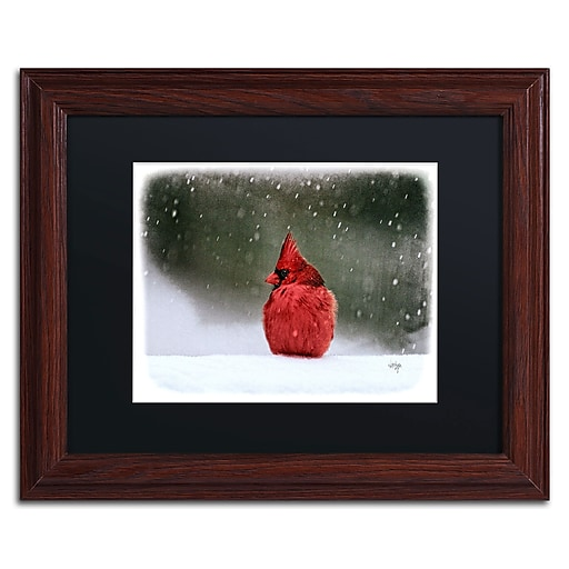 Trademark Fine Art Lois Bryan 'A Ruby in the Snow'  11 x 14 (886511638723)