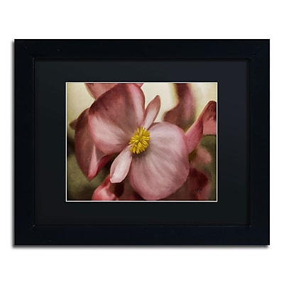 Trademark Fine Art Lois Bryan 'Dewy Pink Painted Begonia' 11 x 14 (886511639348)