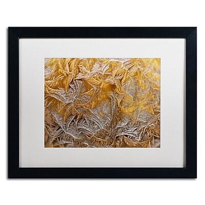 Trademark Fine Art Lois Bryan 'Frosted Filagree' 16 x 20 (LBR0261-B1620MF)